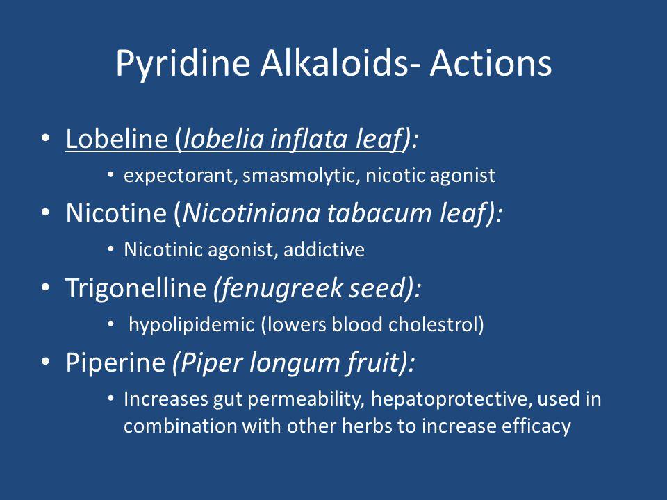 Pyridine Alkaloids- Actions