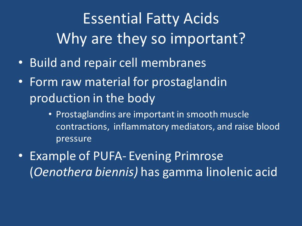Essential Fatty Acids Why are they so important