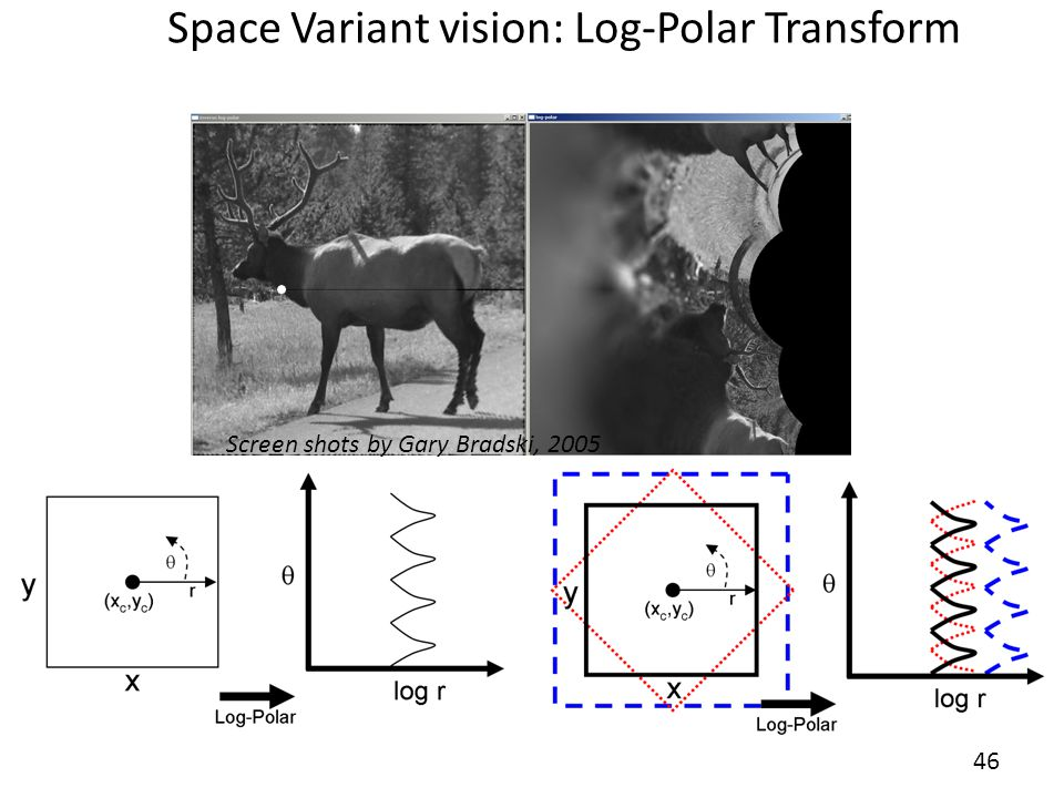 Space Variant vision: Log-Polar Transform