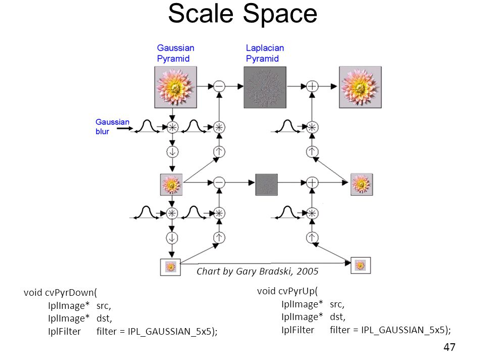 Scale Space 47 47 Chart by Gary Bradski, 2005 void cvPyrUp(