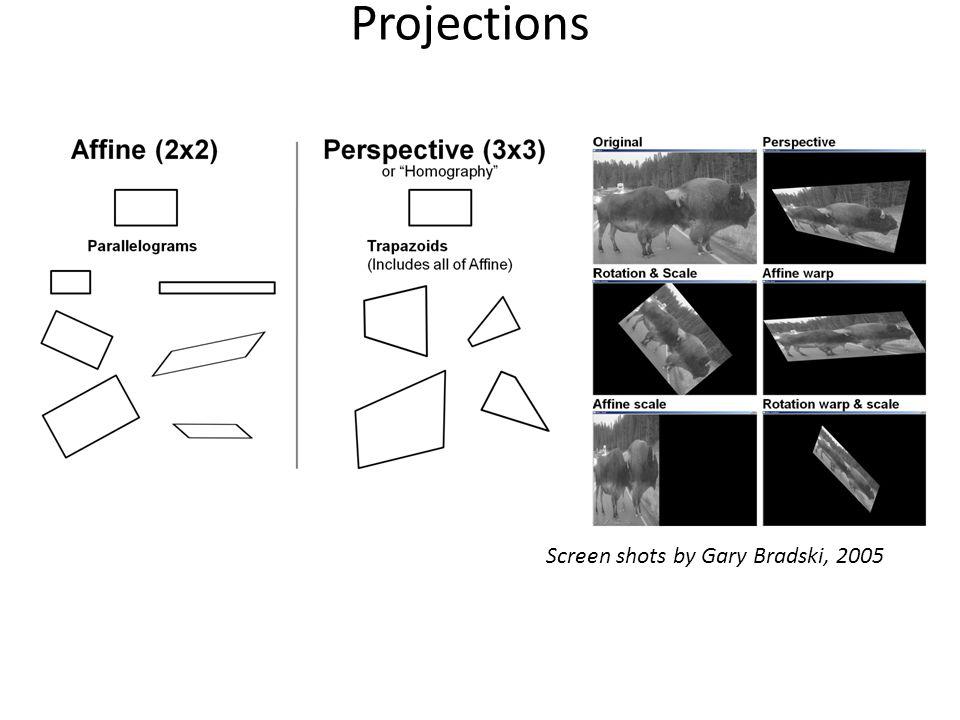 Projections Screen shots by Gary Bradski, 2005