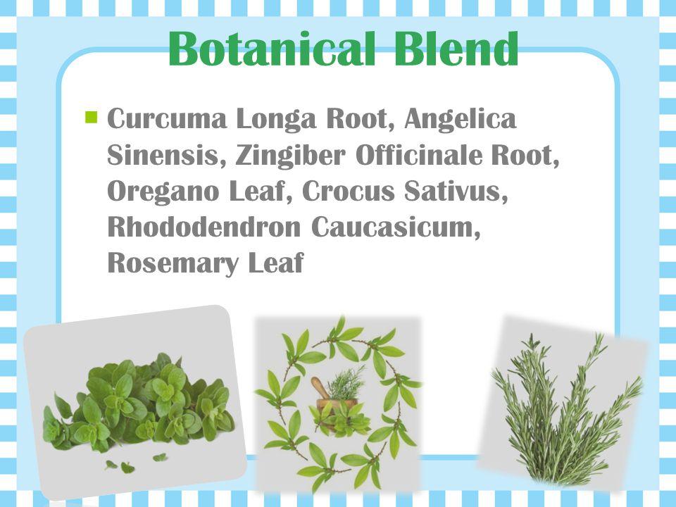 Botanical Blend Curcuma Longa Root, Angelica Sinensis, Zingiber Officinale Root, Oregano Leaf, Crocus Sativus, Rhododendron Caucasicum, Rosemary Leaf.