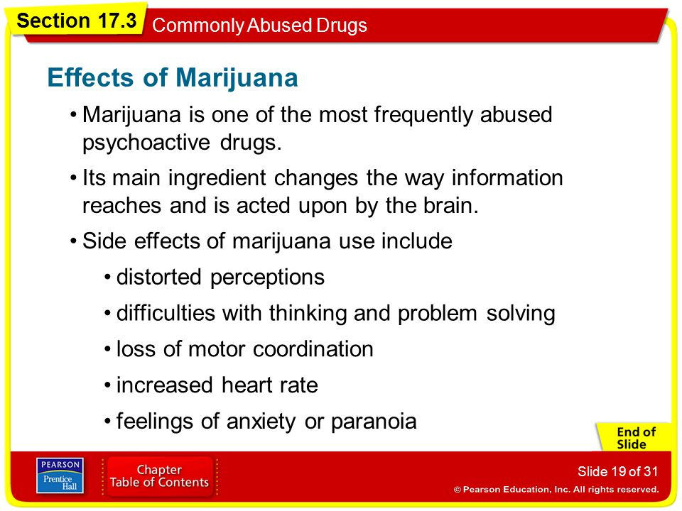 Effects of Marijuana Marijuana is one of the most frequently abused psychoactive drugs.