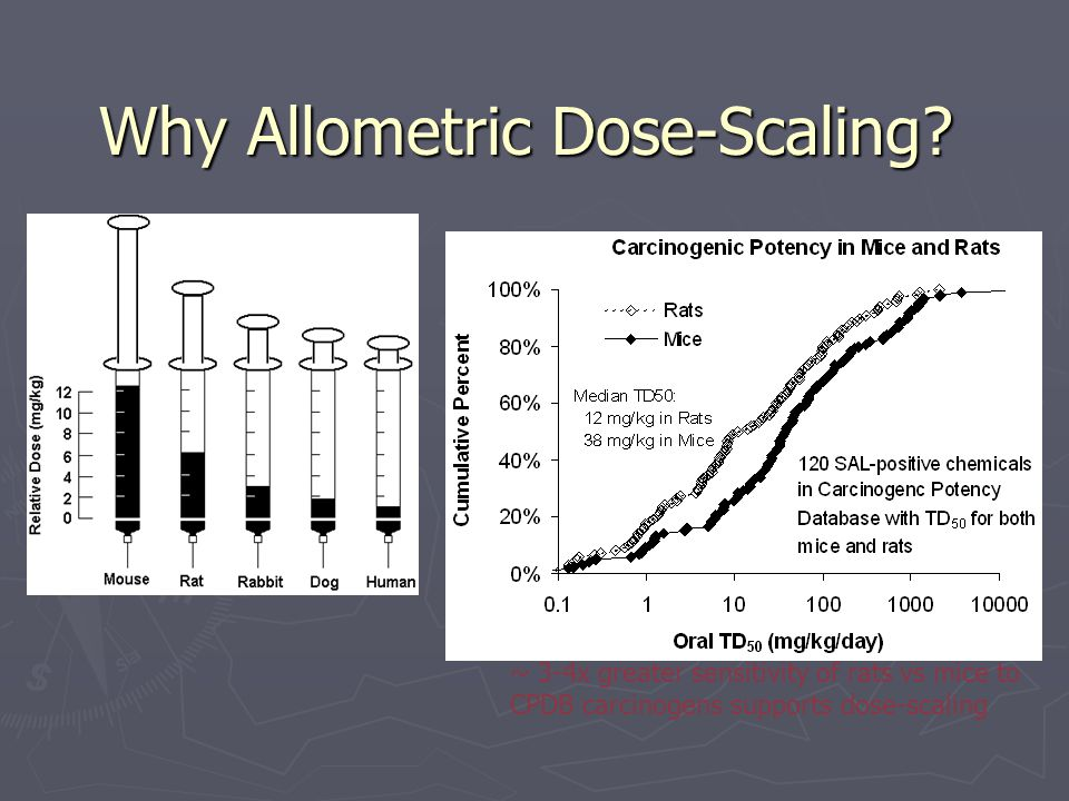 Why Allometric Dose-Scaling