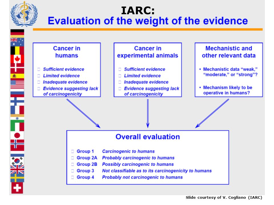 IARC: Slide courtesy of V. Cogliano (IARC)