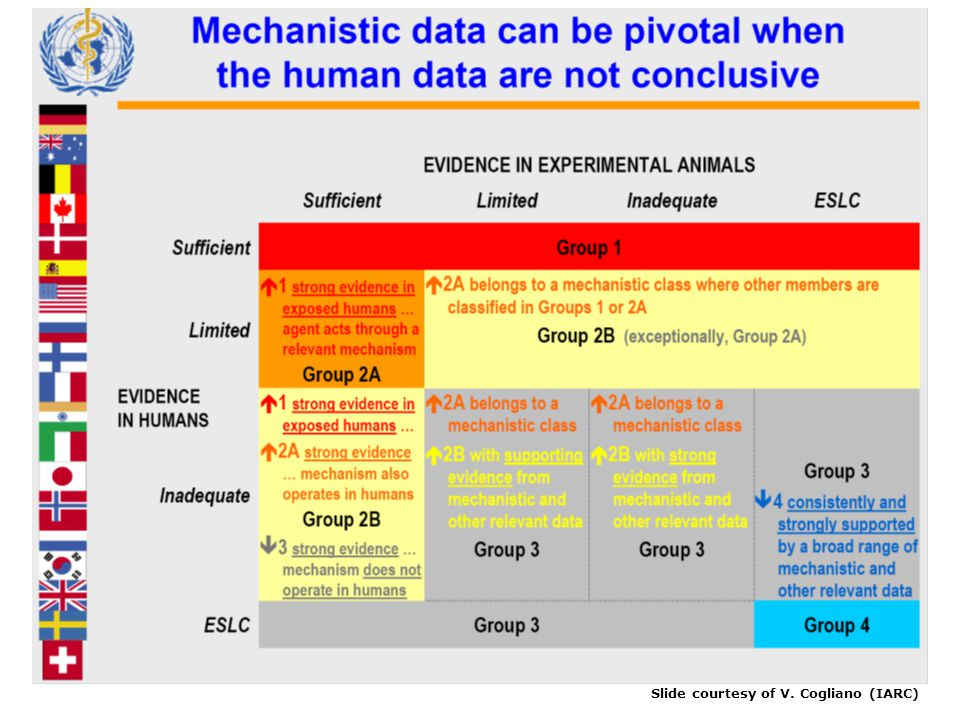 Slide courtesy of V. Cogliano (IARC)