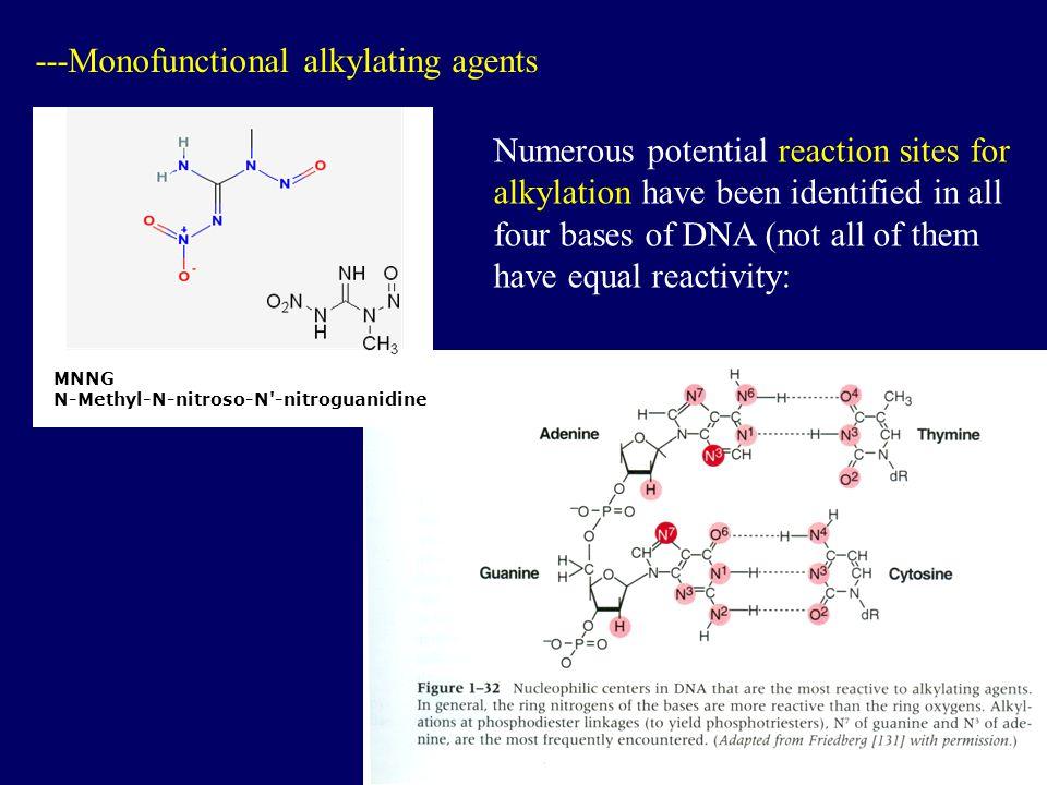 ---Monofunctional alkylating agents