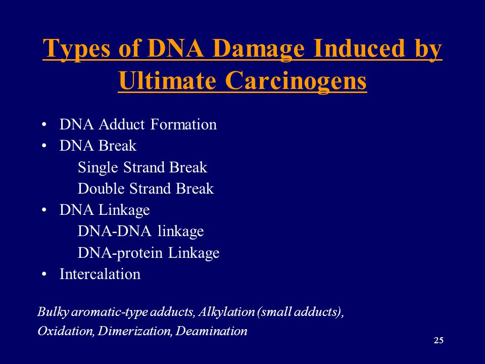 Types of DNA Damage Induced by Ultimate Carcinogens