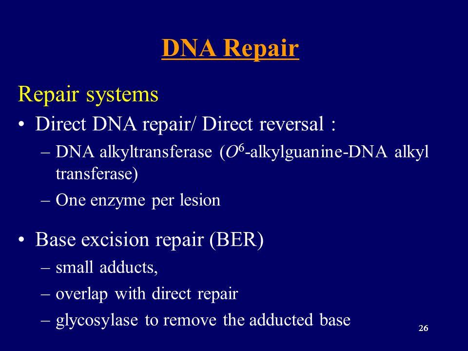 DNA Repair Repair systems Direct DNA repair/ Direct reversal :