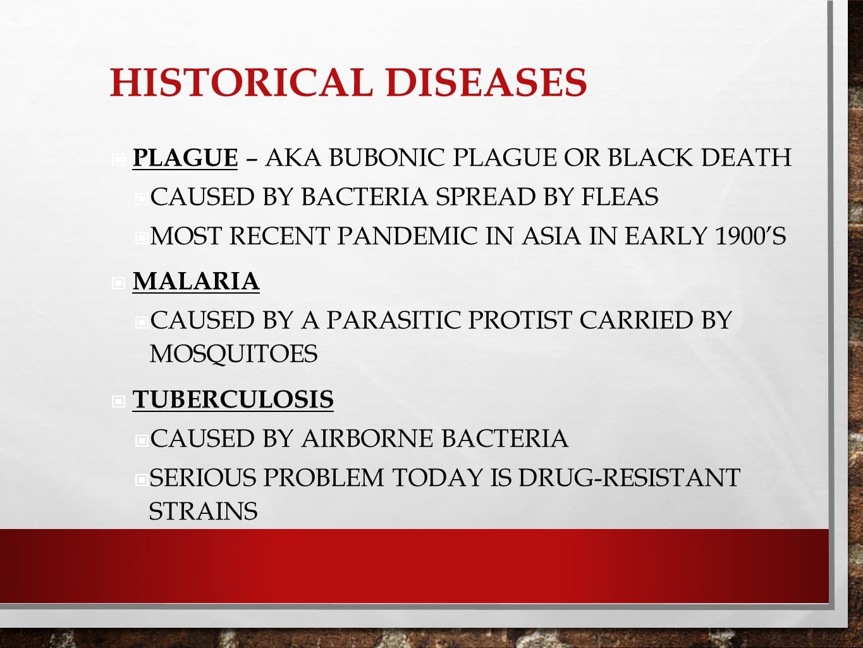 Historical Diseases Plague – aka bubonic plague or black death