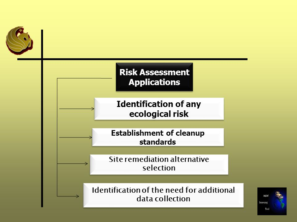 Risk Assessment Applications Identification of any ecological risk