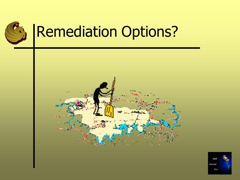 Remediation Options