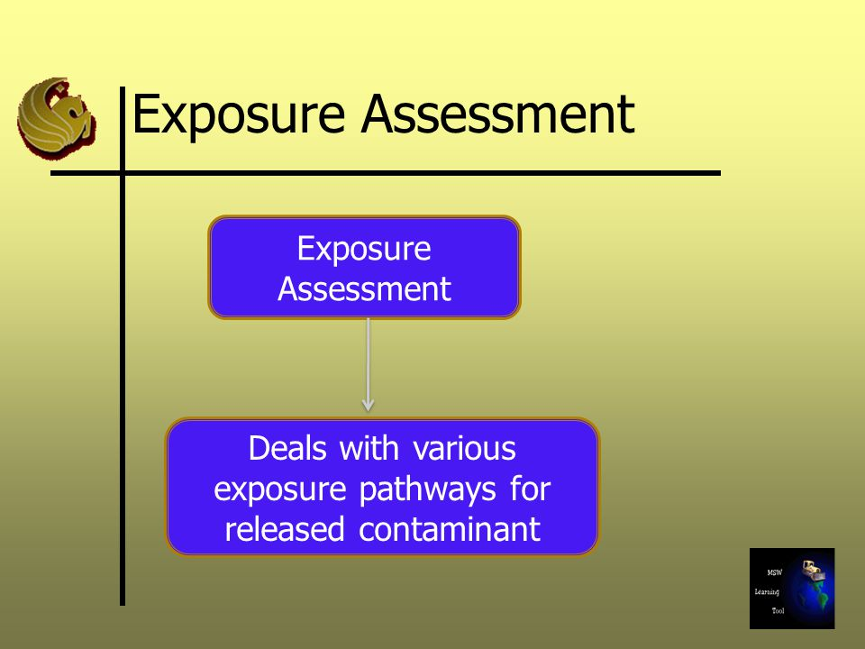 Deals with various exposure pathways for released contaminant