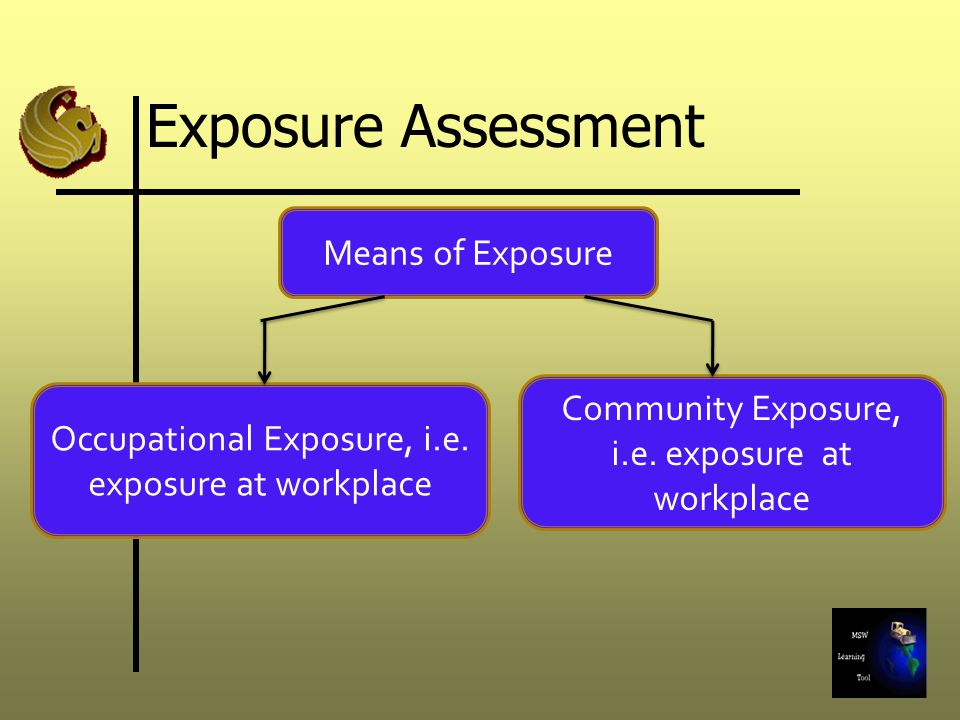 Exposure Assessment Means of Exposure