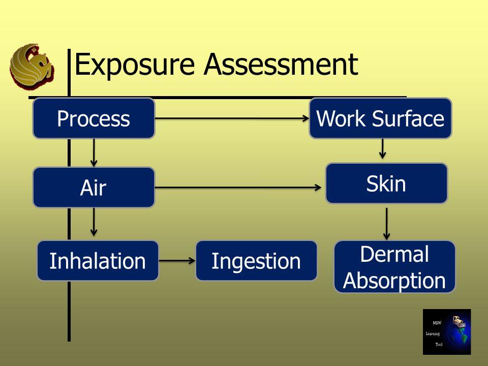 Exposure Assessment Process Work Surface Skin Air Inhalation Ingestion