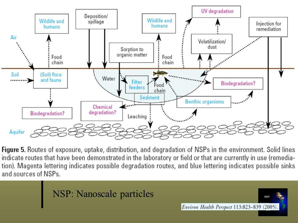 NSP: Nanoscale particles