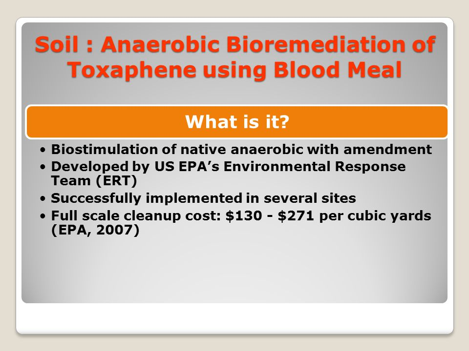 Soil : Anaerobic Bioremediation of Toxaphene using Blood Meal