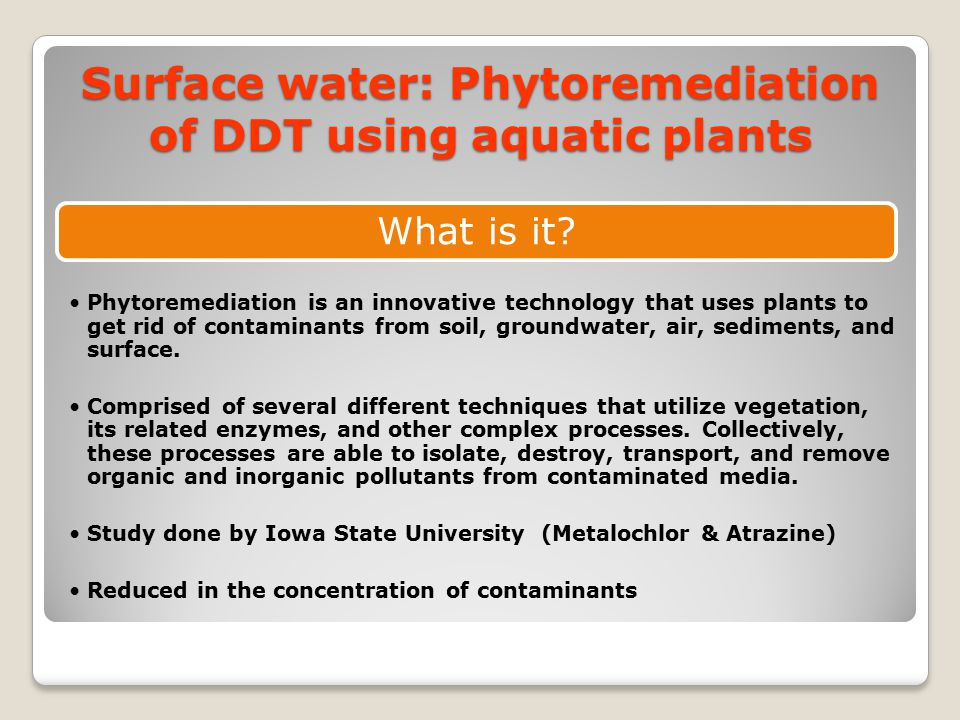 Surface water: Phytoremediation of DDT using aquatic plants