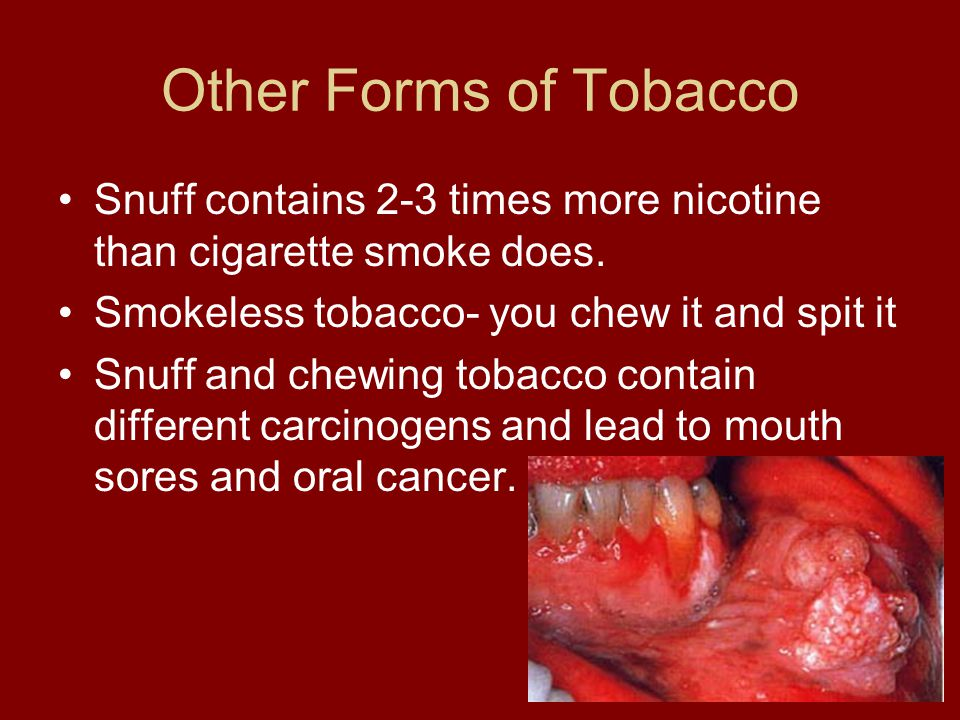 Other Forms of Tobacco Snuff contains 2-3 times more nicotine than cigarette smoke does. Smokeless tobacco- you chew it and spit it.