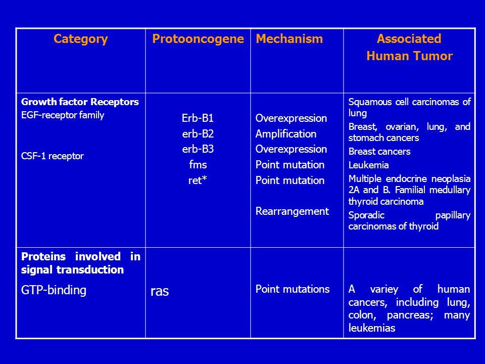 ras Category Protooncogene Mechanism Associated Human Tumor