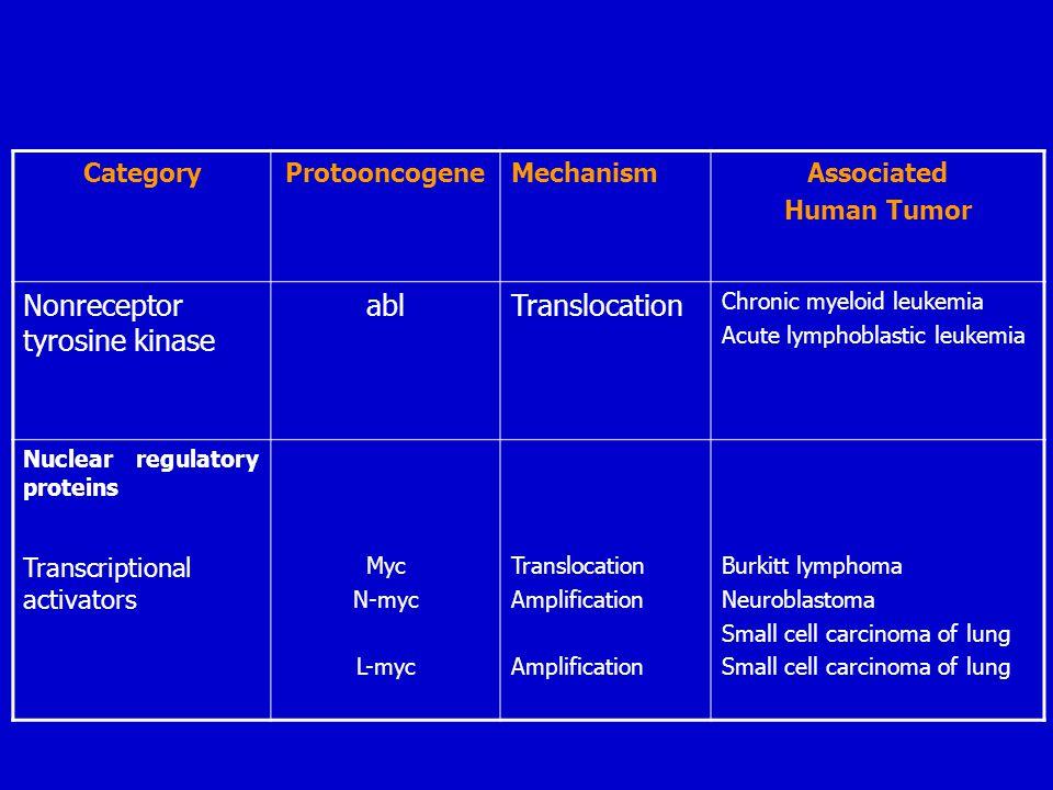 Nonreceptor tyrosine kinase abl Translocation