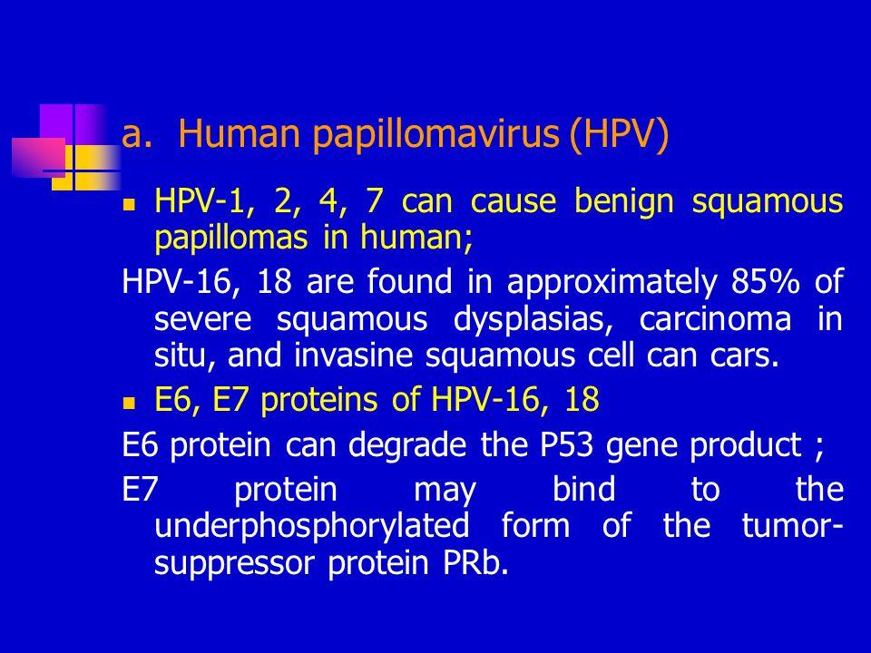 a. Human papillomavirus (HPV)