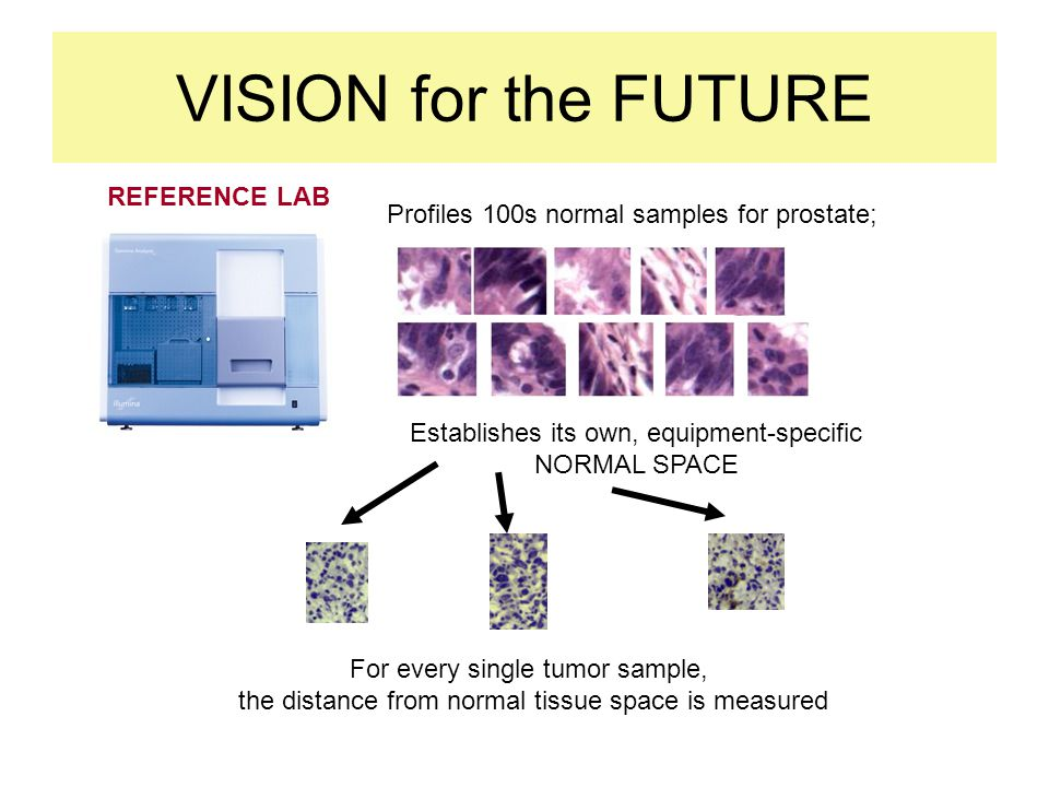 VISION for the FUTURE REFERENCE LAB