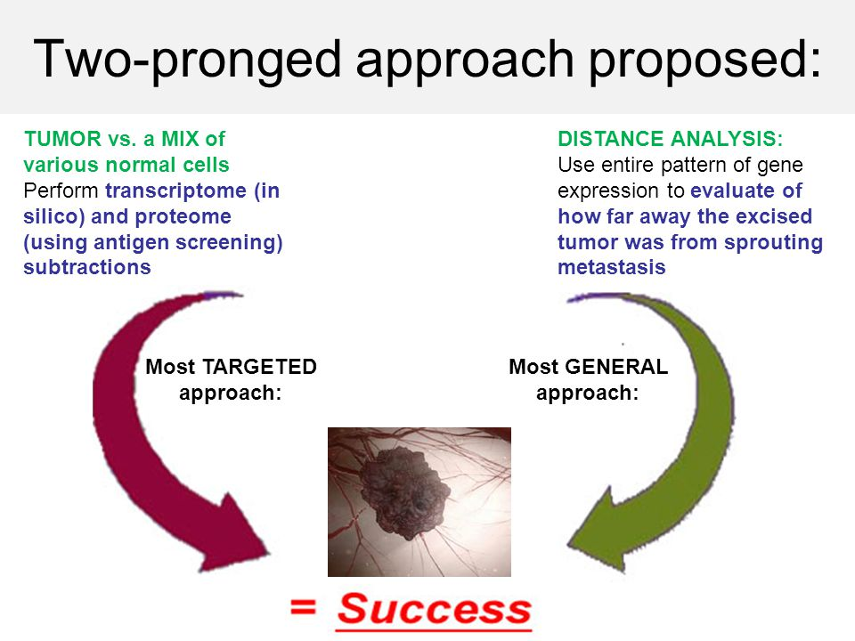 Two-pronged approach proposed: