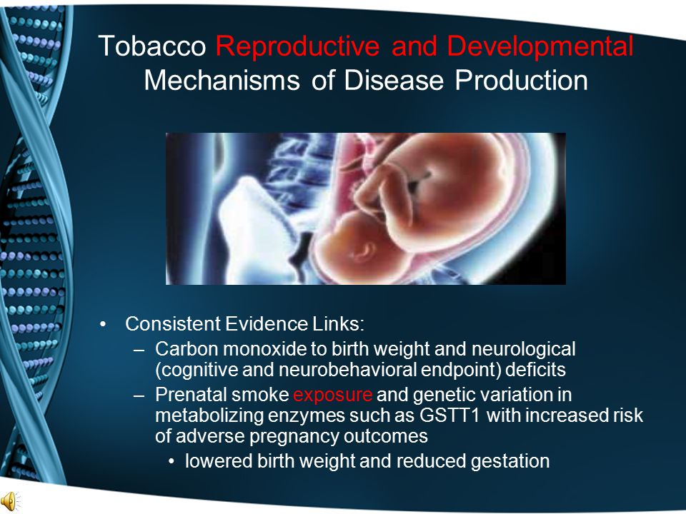 Tobacco Reproductive and Developmental Mechanisms of Disease Production