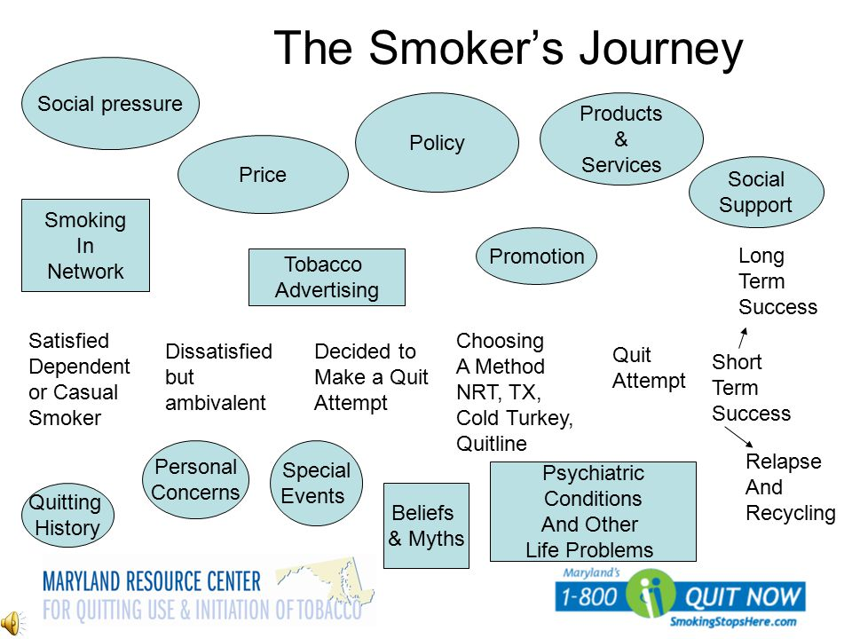 The Smoker's Journey Social pressure Policy Products & Services Price