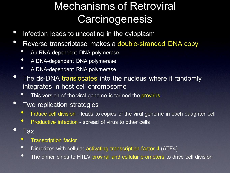 Mechanisms of Retroviral Carcinogenesis