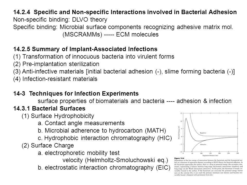 14.2.4 Specific and Non-specific Interactions involved in Bacterial Adhesion