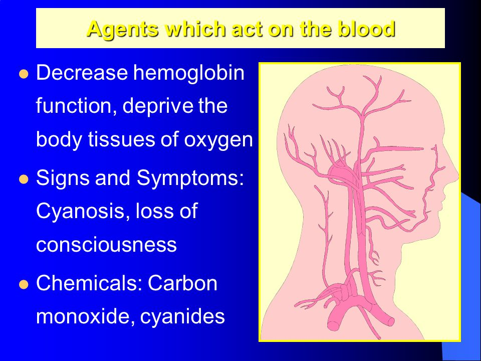 Agents which act on the blood