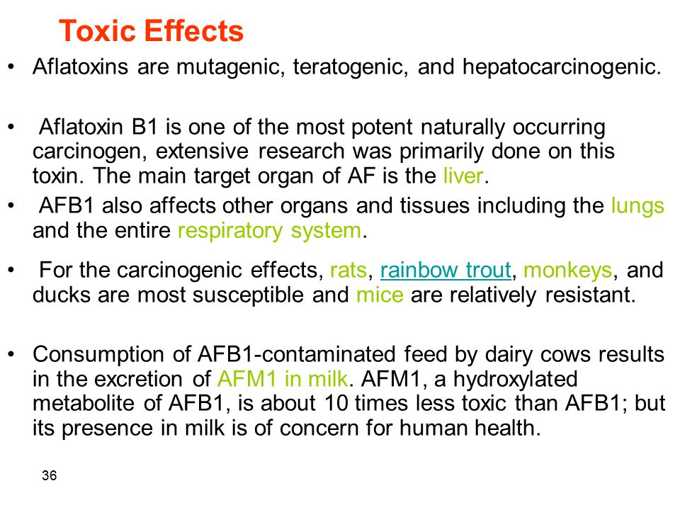 Toxic Effects Aflatoxins are mutagenic, teratogenic, and hepatocarcinogenic.