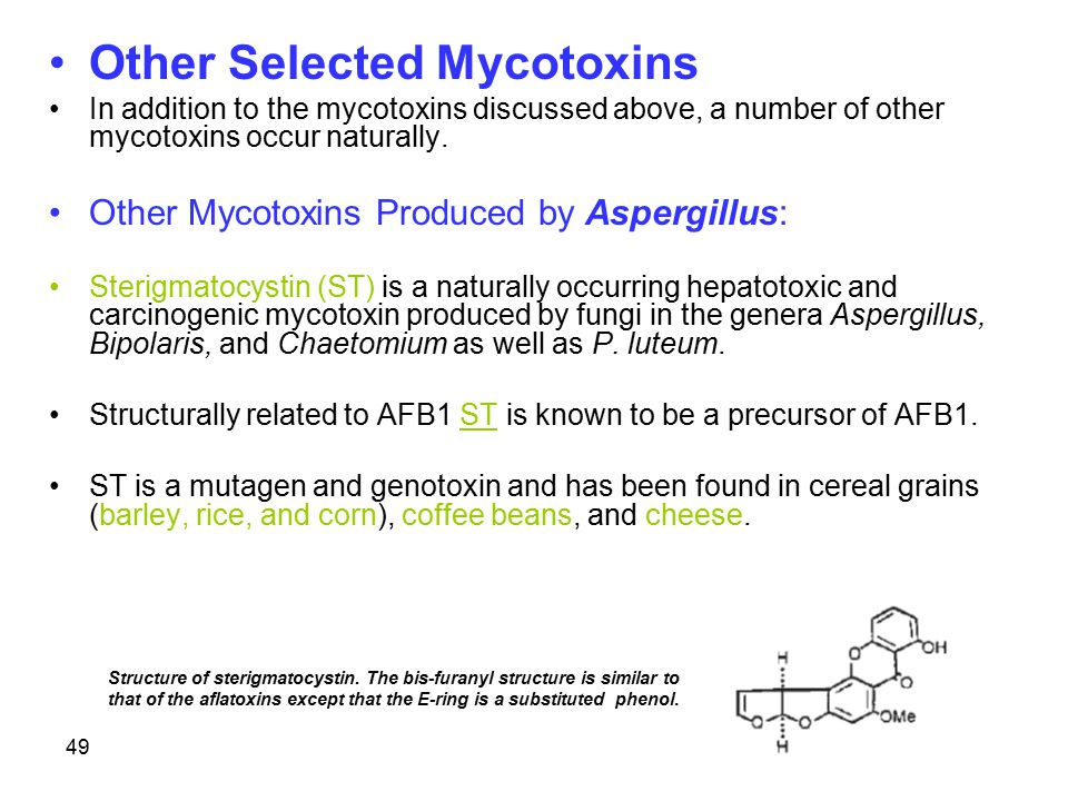 Other Selected Mycotoxins