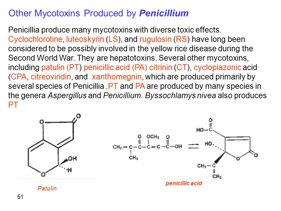 Other Mycotoxins Produced by Penicillium