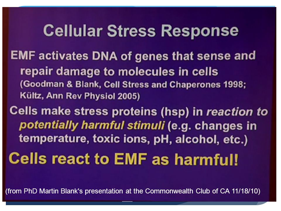 (from PhD Martin Blank s presentation at the Commonwealth Club of CA 11/18/10)