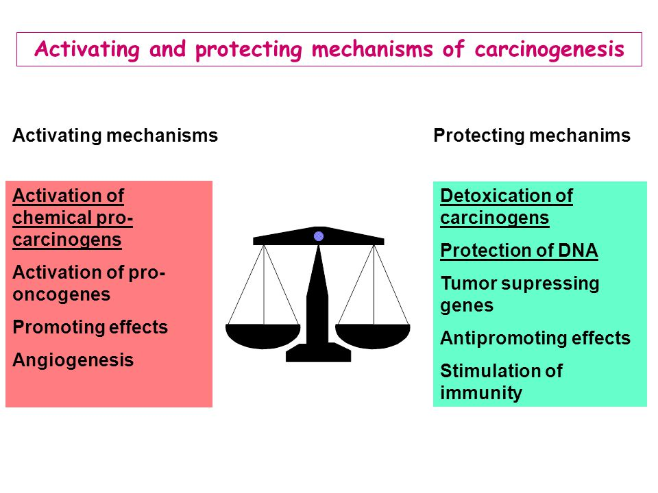 Activating and protecting mechanisms of carcinogenesis