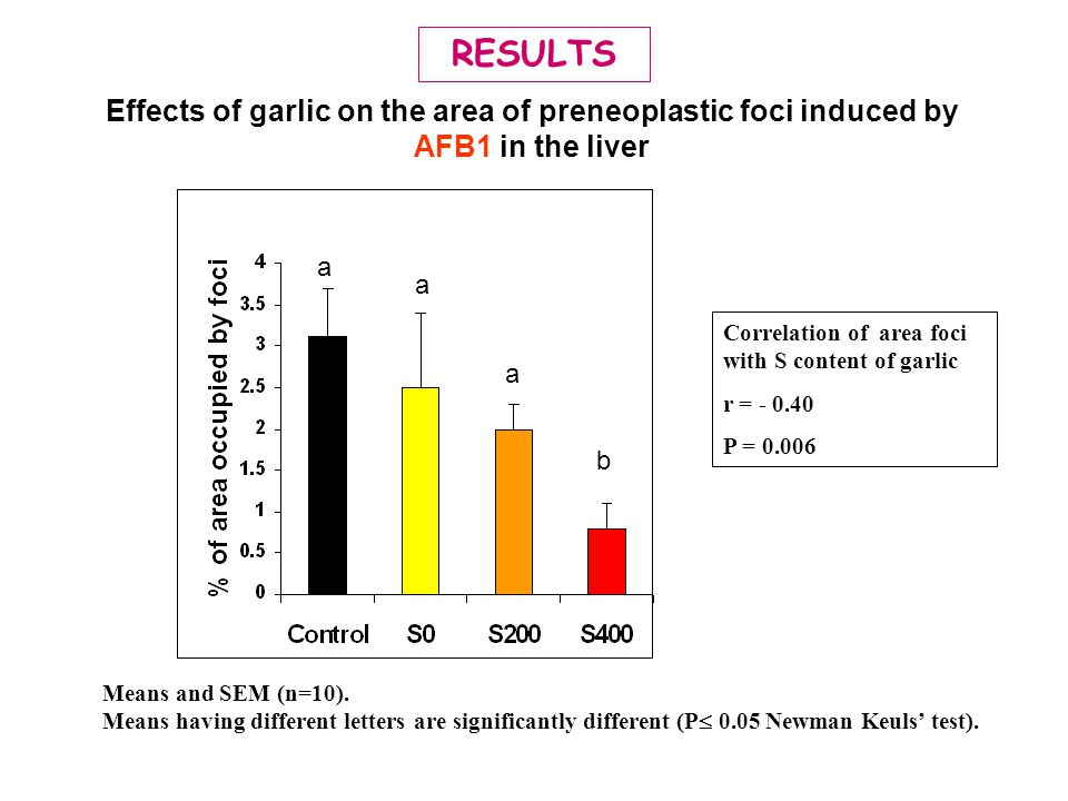 RESULTS Effects of garlic on the area of preneoplastic foci induced by AFB1 in the liver. b. a. Correlation of area foci with S content of garlic.