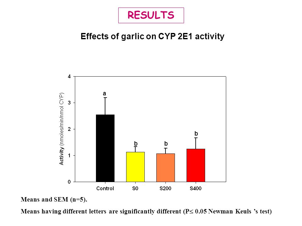Effects of garlic on CYP 2E1 activity