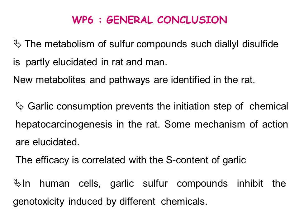 WP6 : GENERAL CONCLUSION