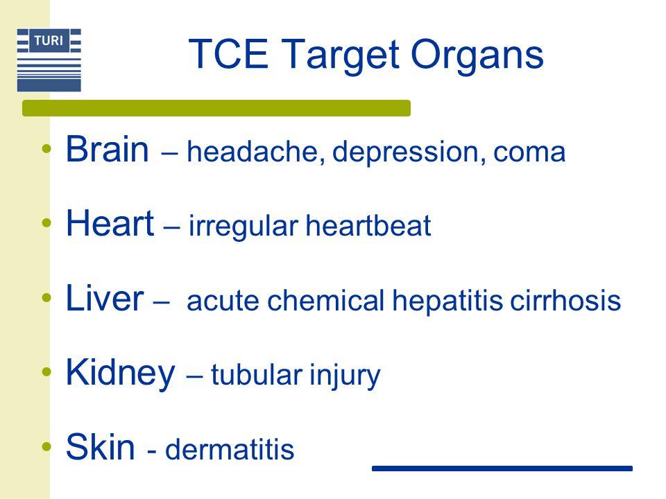 TCE Target Organs Brain – headache, depression, coma