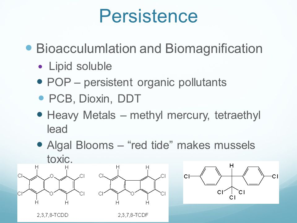 Persistence Bioacculumlation and Biomagnification Lipid soluble