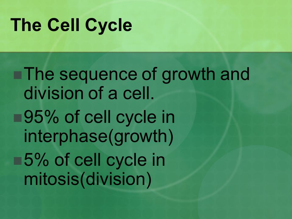 The Cell Cycle The sequence of growth and division of a cell. 95% of cell cycle in interphase(growth)