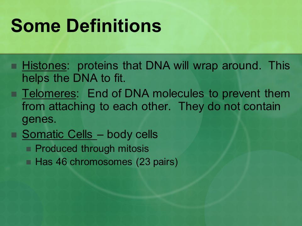 Some Definitions Histones: proteins that DNA will wrap around. This helps the DNA to fit.