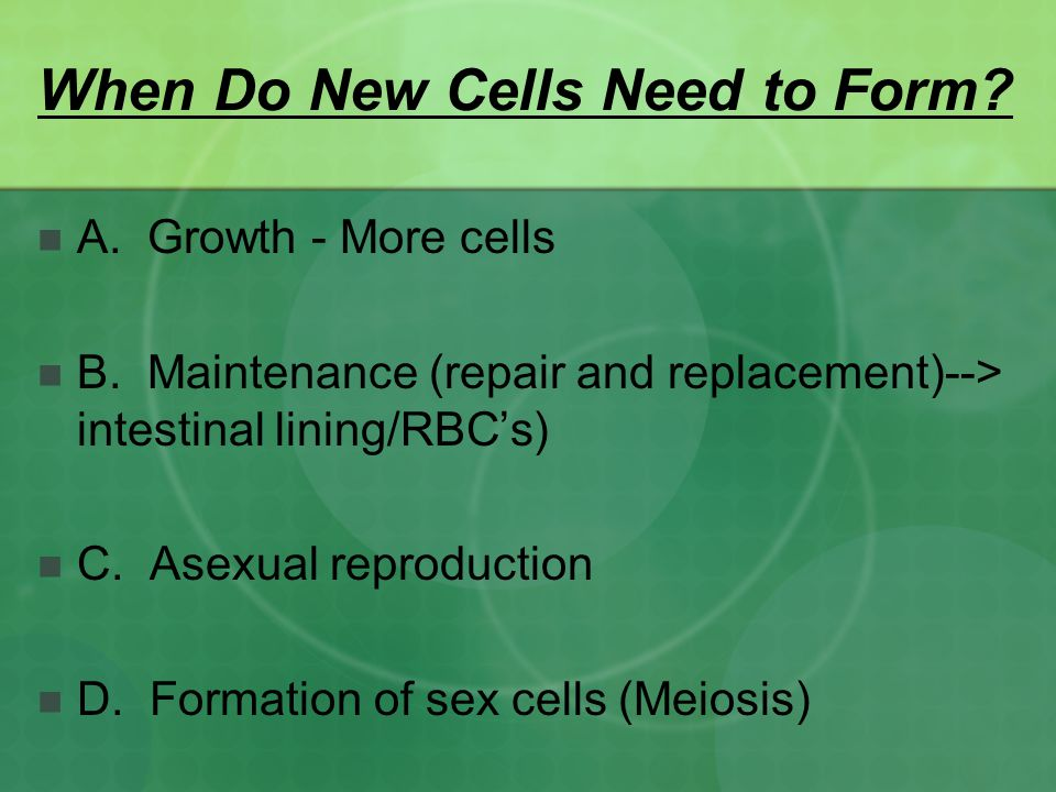 When Do New Cells Need to Form