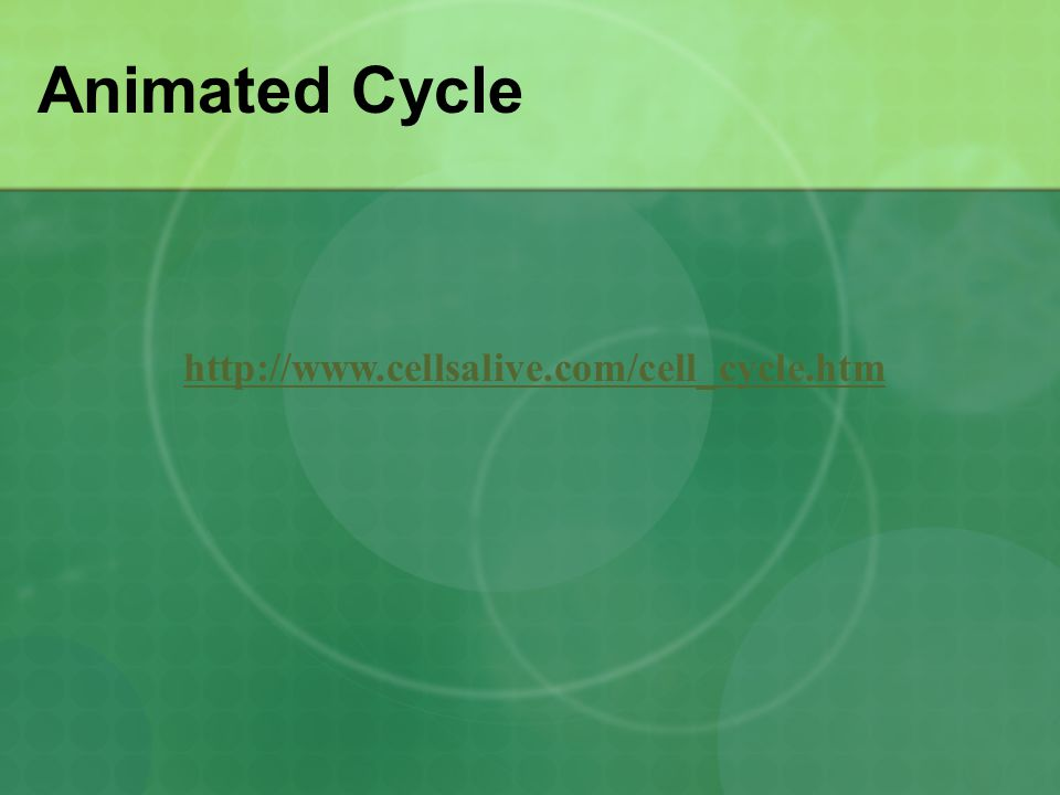 Animated Cycle http://www.cellsalive.com/cell_cycle.htm