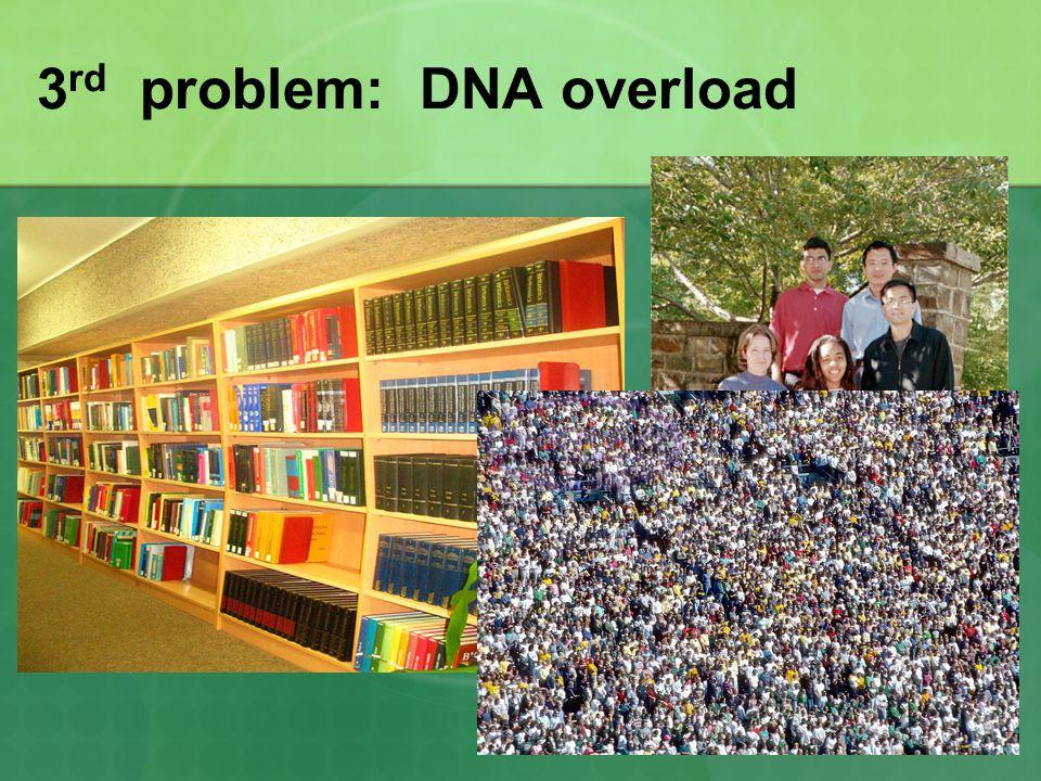 3rd problem: DNA overload