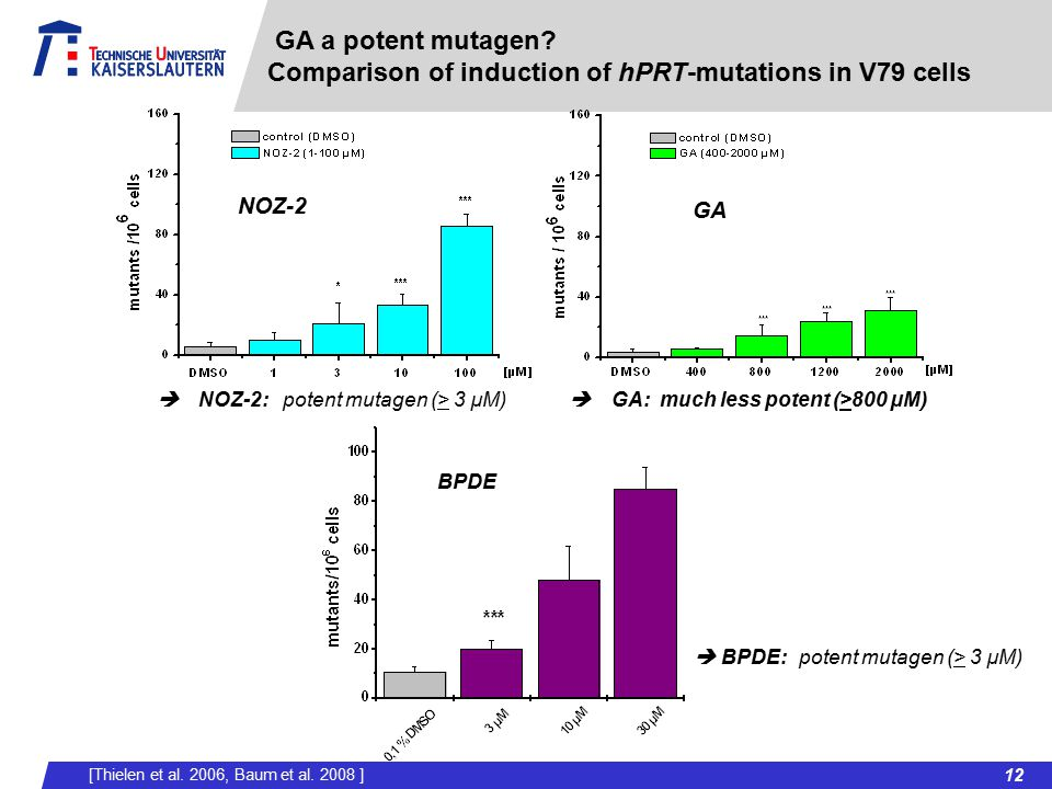 GA a potent mutagen Comparison of induction of hPRT-mutations in V79 cells