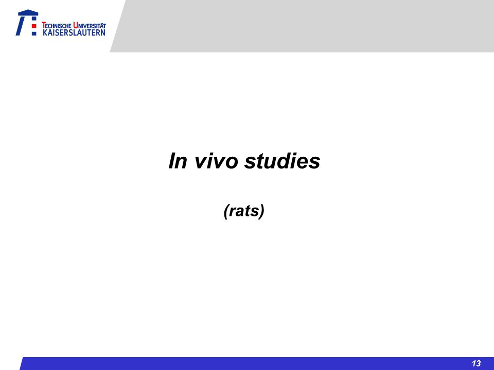 In vivo studies (rats) 13